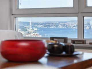 CIHANGIR | stunning Bosphorus view! - Istanbul & Marmara vacation rentals
