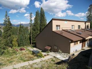 Buffalo Ridge 2 bed Loft ~ RA48297 - Silverthorne vacation rentals