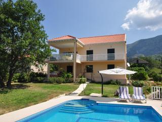Villa Petra with swimming pool - Gruda vacation rentals