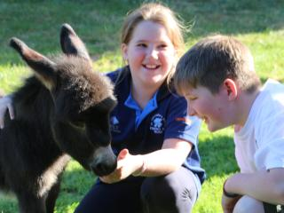 Donkey Tales Farm Cottages - Maryborough vacation rentals