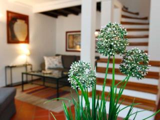 Luxury Orbitelli - Lazio vacation rentals