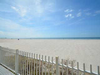 BEACHFRONT HOME HEATED POOL PET FRIENDLY - Redington Shores vacation rentals