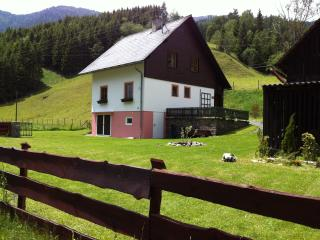 Traditional Austrian farmhouse - Stadl an der Mur vacation rentals