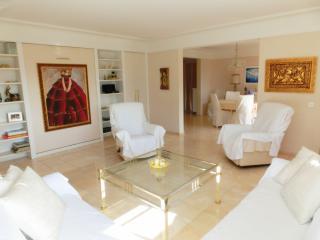 5 stars apartment at Lago Maggiore - Locarno vacation rentals