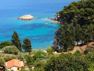 Traditional houses near the sea - Sporades vacation rentals