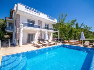 Villa Mavi Koy, Islamlar - Turkish Mediterranean Coast vacation rentals