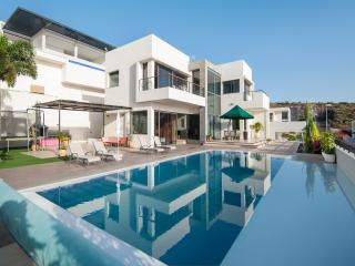 7 Bedroom Private Villa With Garden & Pool - El Medano vacation rentals