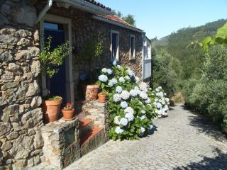 Casa da Lomba and Annexes - Lousa vacation rentals