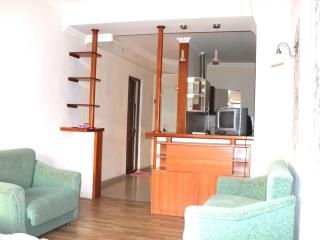 Flat in Tbilisi - Tbilisi vacation rentals