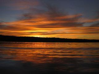 Lakefront Cottage in DownEast Maine - Franklin vacation rentals