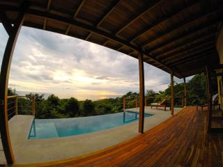 Luxury Villa w/ Breathtaking Views & Infinity Pool - Chirripo National Park vacation rentals