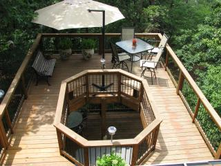 PRIVATE, QUIET, RELAXING,  ADVENTURES JUST OUTSIDE - Eureka Springs vacation rentals