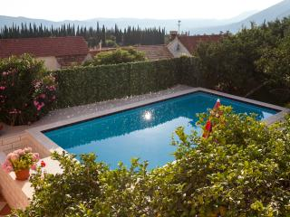 Villa Mateo - Three-Bedroom Apartment with Terrace and Private Pool - Gruda vacation rentals