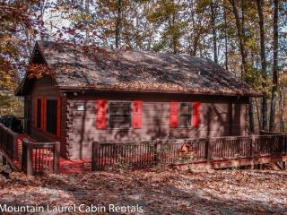 BULLWINKLE`S BUNGALOW- 2BR/1BA- COZY MOUNTAIN VIEW CABIN SLEEPS 5, SCREENED PORCH WITH PRIVATE HOT TUB, GAS GRILL, WIFI, FLAT SC - Blue Ridge vacation rentals