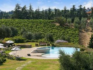 Sublime Sole del Chianti with game room, fitness room, fireplace and jacuzzi - Tuscany vacation rentals