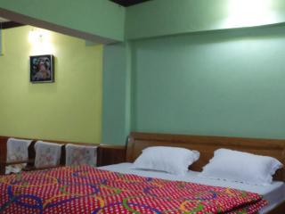 HIMADRI GUEST HOUSE SHITLAKHET ALMORA - Almora vacation rentals