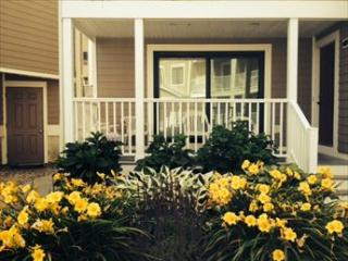 227 Beach Avenue 124323 - Cape May vacation rentals