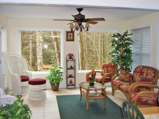 Cabin w/Creek Near Helen Water Park-Walk to Town - Helen vacation rentals