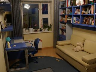 Modern room with Visa support&more - Moscow vacation rentals