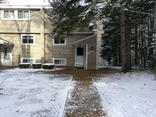 White Mountain condo close to Waterville Valley (JON6M) - Thornton vacation rentals