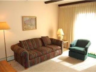 Meadow Ridge Court 3 Unit 7 - Fraser vacation rentals