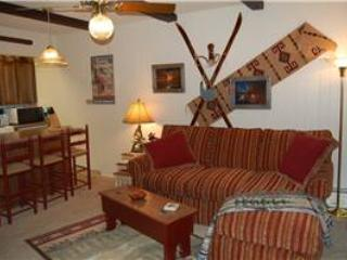 Hi Country Haus Unit 503 - Image 1 - Winter Park - rentals
