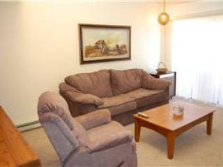 Meadow Ridge Court 18B  Unit 11 - Image 1 - Fraser - rentals