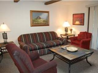 Hi Country Haus Unit 2121 - Image 1 - Winter Park - rentals
