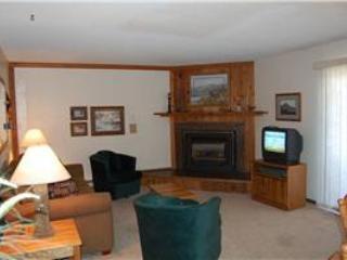 Timber Run Dogwood 101 - Image 1 - Winter Park - rentals