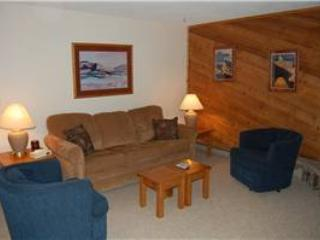 Timber Run Evergreen 101 - Winter Park vacation rentals