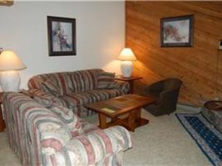 Timber Run Evergreen 311 - Winter Park vacation rentals