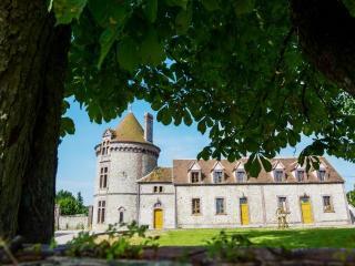LA TOUR D ALIGRE - Champrond-en-Gatine vacation rentals