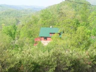 Eagles Nest is perched on the side of a mountain with very nice scenic views of Norris Lake. - Norris vacation rentals