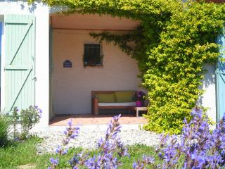 Splendid  villa for 6 people near Carcassonne in Cathar Country - Pyrenees-Orientales vacation rentals