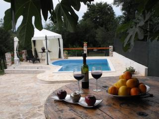 Istrian house with a swimming pool - Umag vacation rentals
