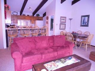 Look Out Condo - New Mexico vacation rentals