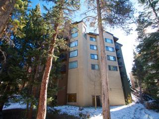Powderhorn - Ski-in,Sk-Out, Downtown Breckenridge - Breckenridge vacation rentals
