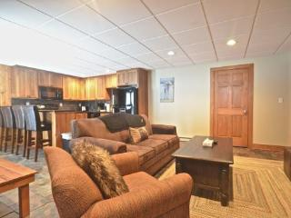 Luxurious 2BR Disciples Village Ski In/Ski Out Condo - Completely Remodeled, Sleeps 9 - Boyne Falls vacation rentals