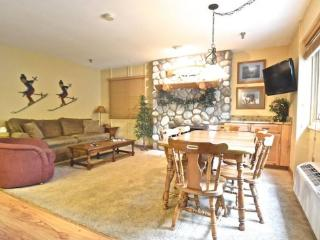 2BR Ski In/Ski Out Mountain Villa - Recently Remodeled Condo - Just Behind Boyneland Lift - Northwest Michigan vacation rentals
