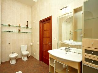 One-bedroom apartment in the center on Nevsky Pr. - Saint Petersburg vacation rentals