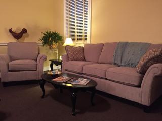 Studio loft apartment in Historic Downtown Crozet - Crozet vacation rentals
