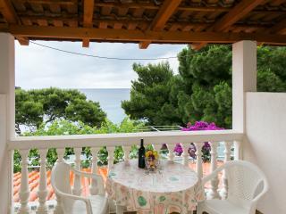 Apartments Franka Saplunara-Twin Room with Terrace and Sea view  No2 - Mljet vacation rentals