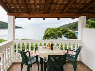 Apartments Franka Saplunara-Triple Room with Terrace and Sea View  No1 - Southern Dalmatia Islands vacation rentals