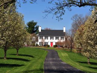 Spectacular Virginia estate in wine&horse country. - Lovettsville vacation rentals