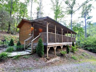Deer Run - Horse Shoe vacation rentals