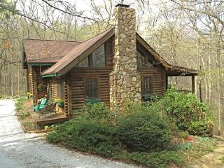 Laurel Cove Cabin - Swannanoa vacation rentals