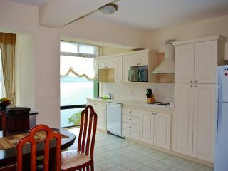 Holiday and vacation apartament rent in PANAJACHEL - Solola vacation rentals
