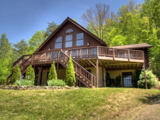 Eagles Perch- Modern & Spacious Log Home. Total Seclusion On 15 Mountain Acres; Incredible Views! - Candler vacation rentals