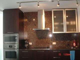 Cozy Luxurious Newly Built Condo ~ Downtown Toront - Toronto vacation rentals