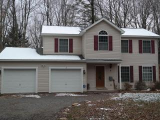 207 GWA - Blakeslee vacation rentals